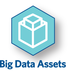 Big Data Assets Icon