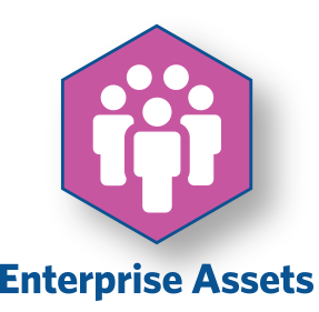 Enterprise Assets Icon