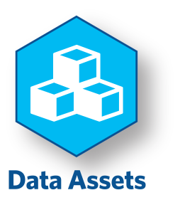Data Assets Icon